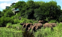 Отель «Singita Lebombo Lodge»